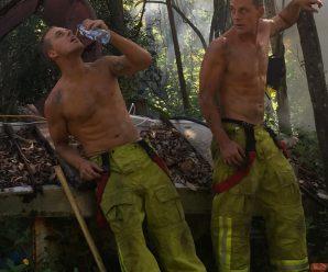 Des chiots et des pompiers pour un calendrier